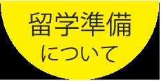 ryugaku-junbi-nitsuite